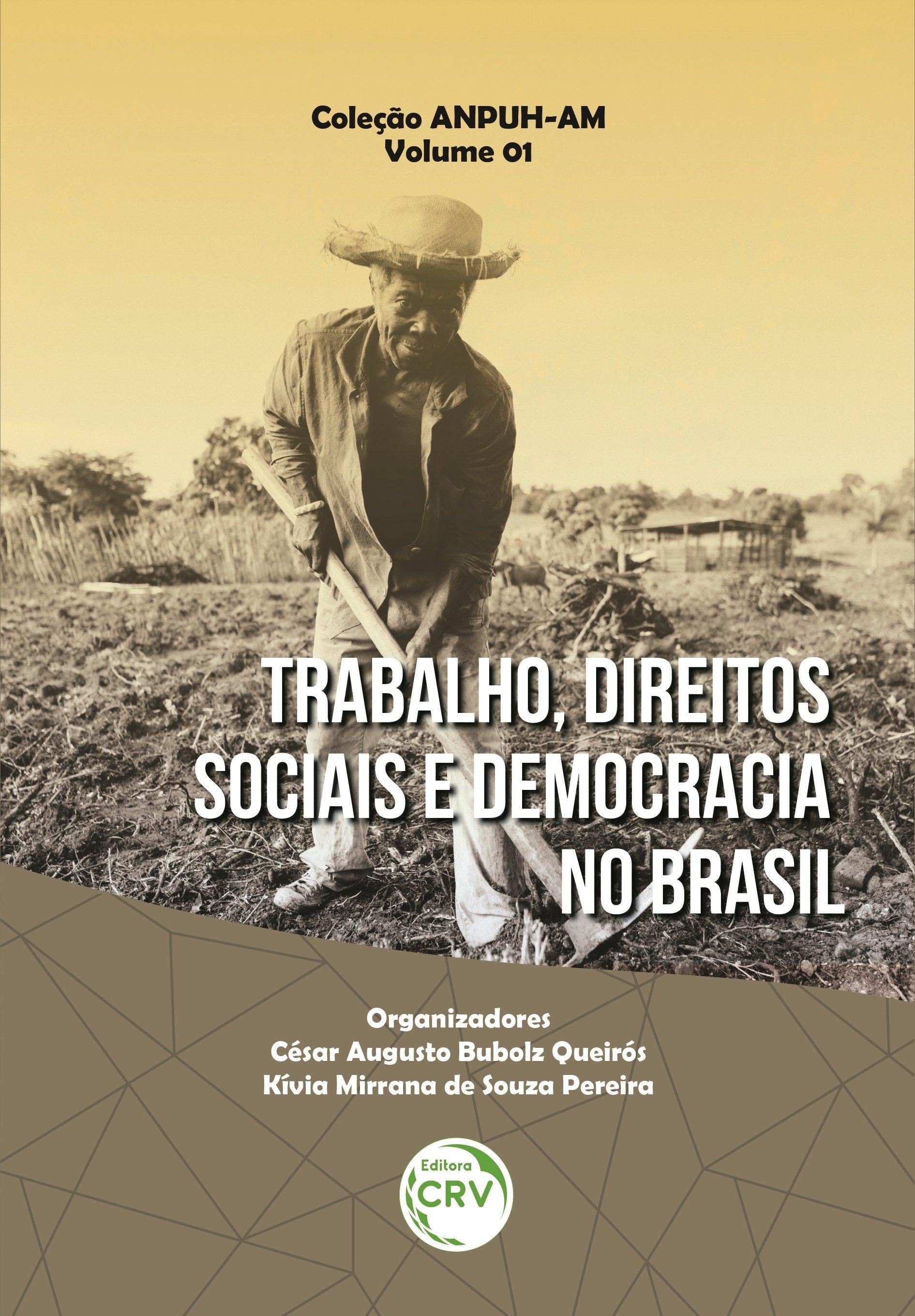 Trabalho, Direitos Sociais e Democracia no Brasil